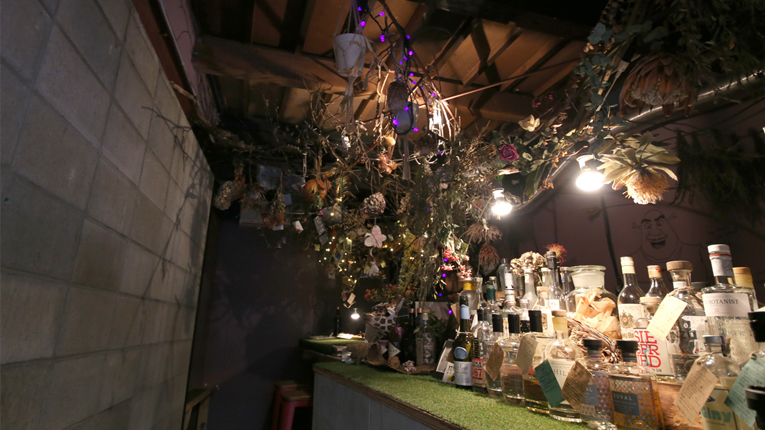 best bars to go to alone in kyoto